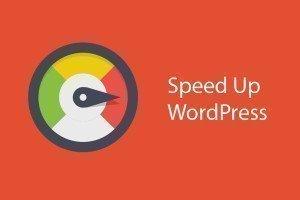 Veocizzare wordpress