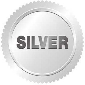 Web Marketing silver