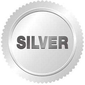 Web Marketing silver