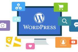 Realizzazione siti WordPress professionali e di qualità