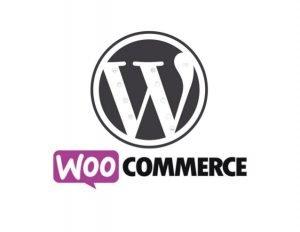 Servizi di assistenza e supporto per WooCommerce